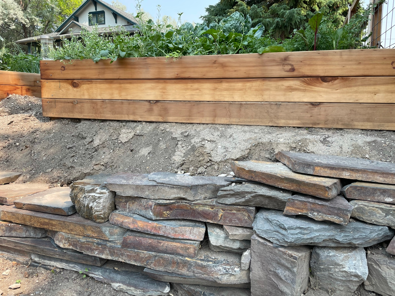 Half-built slate retaining wall with cedar raised bed above and craftsman house in the background